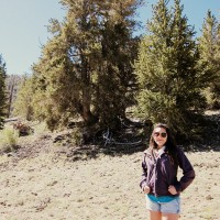 Maria at the Visitor Center of the bristlecone pine forest